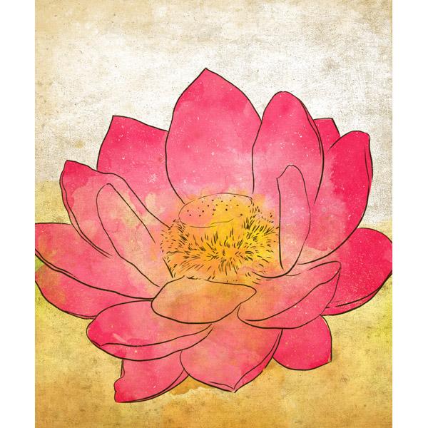 Pink Lotus - Grunge