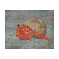 Hermit Crab Alpha