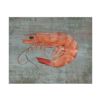 Fresh Shrimp Alpha