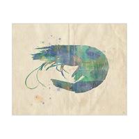 Fancy Shrimp Alpha