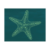 Starfish Dots Alpha