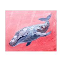 Humpback Whale Alpha