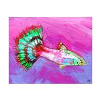 Rainbow Tail Alpha