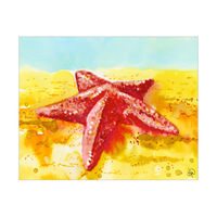 Beached Starfish Alpha