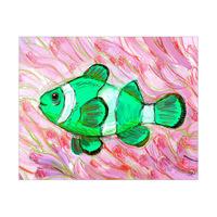 Anemone Fish Alpha