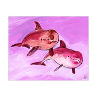 Dolphin Friends Alpha