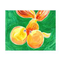 Bubble Eye Goldfish Alpha
