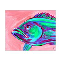 Toau Fish Alpha