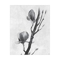 Flowers on a Vine