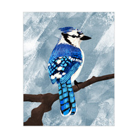 Painted Blue Jay