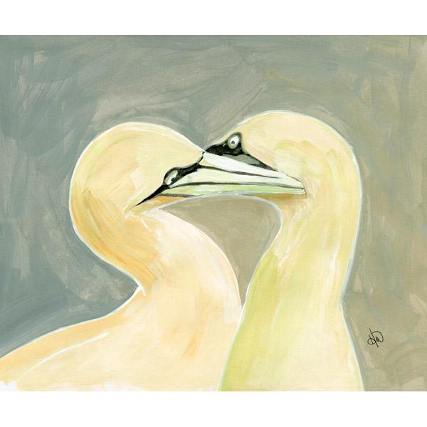Gannets In Love Alpha
