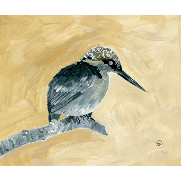 Kingfisher Alpha