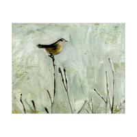 Winter Bird Alpha