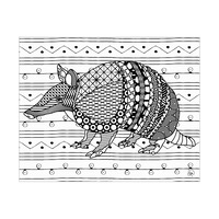 Armadillo CL Background