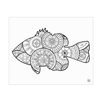 Fish Shape Alpha