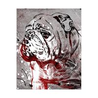 English Bulldog Splash