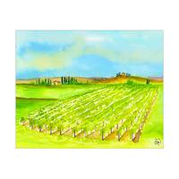 Vineyard In Tuscany Alpha