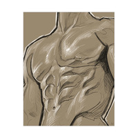 Torso Sketch on Flaxen