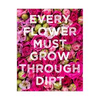 Grow Through Dirt