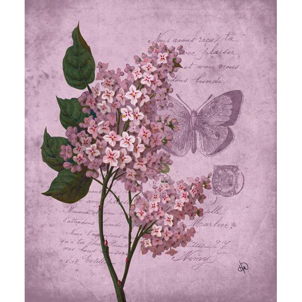 Fancy Antique Flower Butterfly Alpha