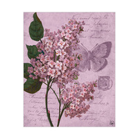 Fancy Antique Flower Butterfly Alpha