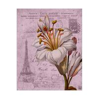 Fancy Antique Flower City Alpha