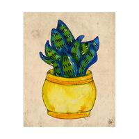 Flat Cactus Alpha