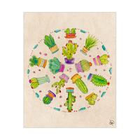 Cactus Circle Alpha