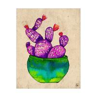 Pleasant Cactus Alpha