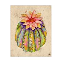 Sunny Cactus Flower Alpha