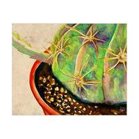 Big Cactus Alpha