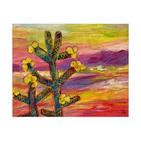 Ojito Cactus Alpha