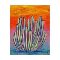 Pitahaya Cactus Alpha