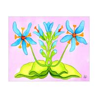Da Boccilo a fiore