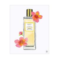 Elegant Fragrance Alpha