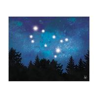 Gemini Forest Blue