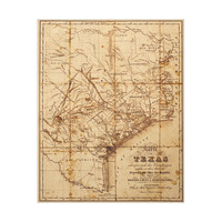 Sepia Texas Map
