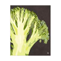 Close Broccoli Black
