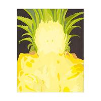 Close Pineapple Black