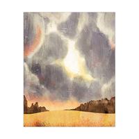 Stormy Skies Auburn