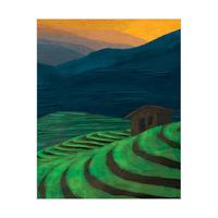Rice Terrace Green Orange Sky