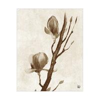 Cherry Blossom Alpha