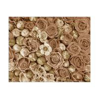 Rose Garden Alpha