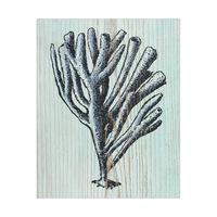 Rustic Coral Aquamarine