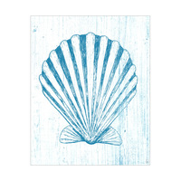 Blue Seashell On White Wood