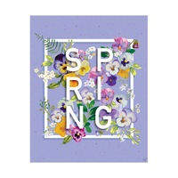 Lavender Spring Pansy
