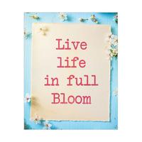 In Full Bloom - Aqua