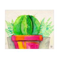 Big Fat Cactus Alpha