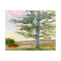 Hervey Tree Alpha