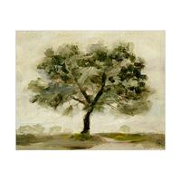 Quercus Robur Alpha